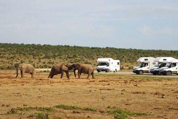 17 Daagse Avontuurlijke Camper Rondreis Kaapstad – Kaapstad