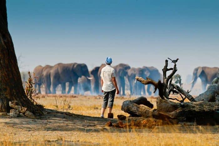15 daagse Zambia en Namibia kampeersafari