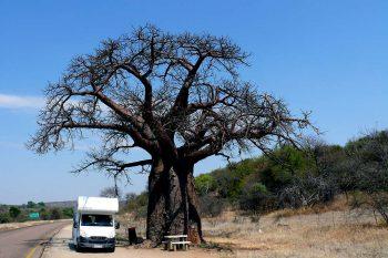 15 Daagse Avontuurlijke Camper Rondreis Kaapstad – Kaapstad