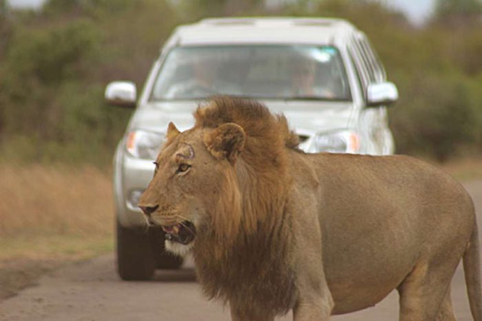 22 daagse autorondreis Natuurlijk Namibië