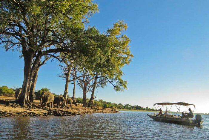 15 daagse Botswana wildparks comfort groepssafari