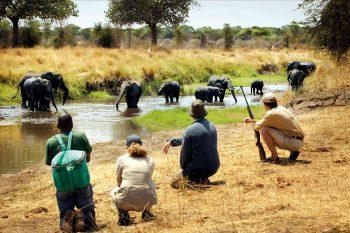 20 Daagse South African Explorer Comfort Groep Safari