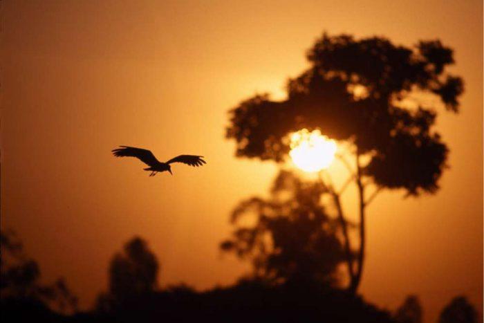 De zon gaat onder in Kenia