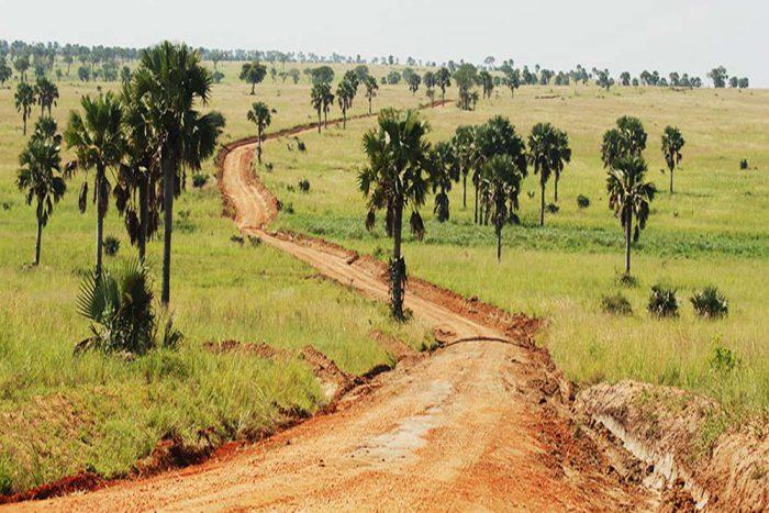 Oeganda landschap