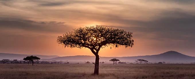De Hoogtepunten Van Zuid-Afrika