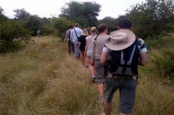 5 Daagse Kruger Lodge Groepssafari Reis