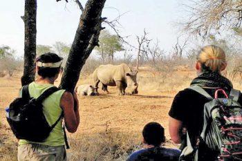 24 Daagse Zuid-Afrika Namibië Botswana En Zimbabwe Kampeer Groepssafari